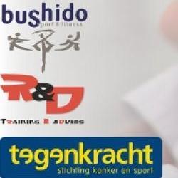 2013 bushido