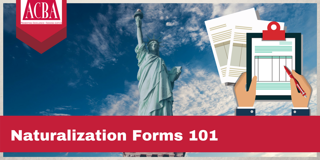 Immigration Naturalization Forms 101