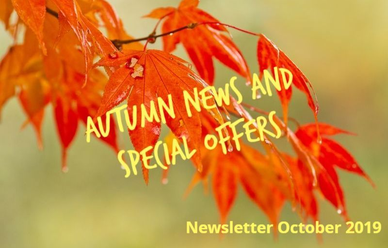Autumn 2019 Special Offers at Brackenbury Clinic, Hammersmith