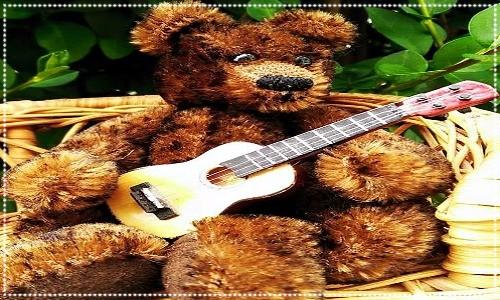 teddy holding guitar