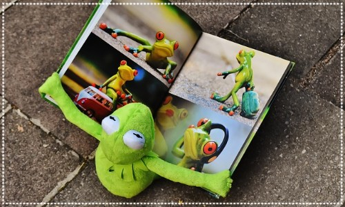 Frog reading a book
