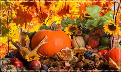 Pumpkins and Autumnal Harvest