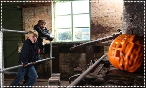 Pumpkin trails at Woodhorn Museum children