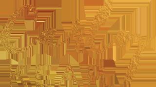 Carly Kear Logo