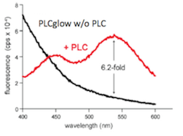 •Greater than six-fold change in fluorescence when hydrolysed by PLCs.