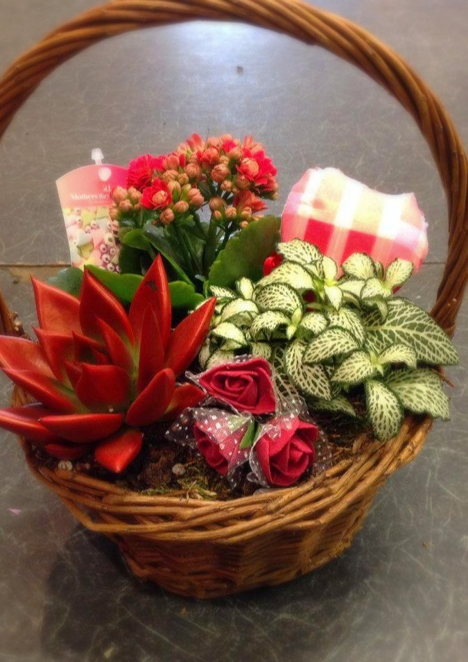 Pozies Florist arrangement