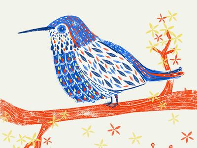Bird-illustration-exploration