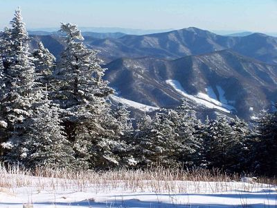 Snowy view from Roan Mountain