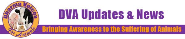 DVA Updates & News