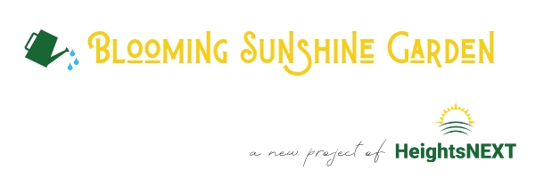 Blooming Sunshine Garden - a new project of HeightsNEXT