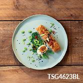 TSG4623BL