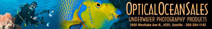 Optical Ocean Sales - Buy UW Photo Gear