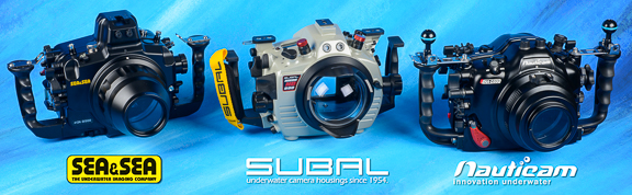 Nikon D500 Underwater Housings