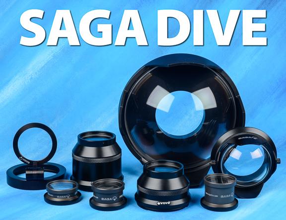 Saga ports
