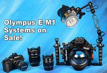 Nauticam Olympus E-M1 & 8mm PRO System