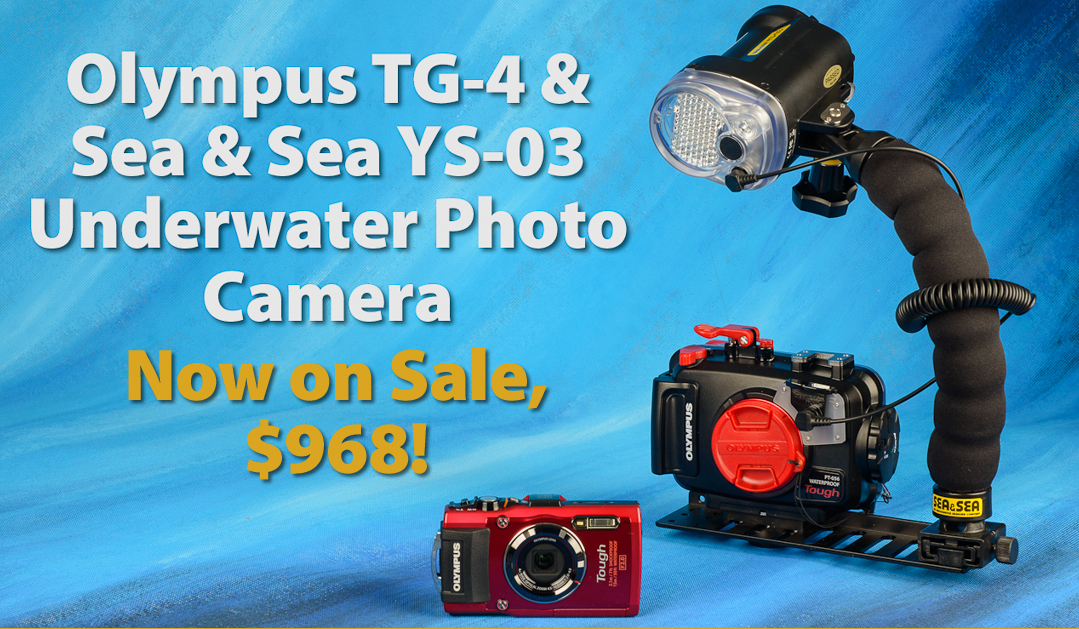 Olympus Sea & Sea TG-4 System on sale!