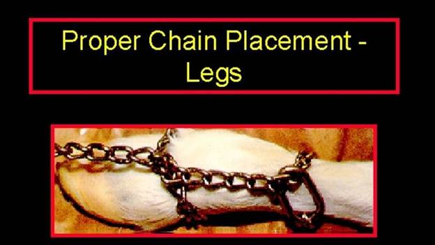 proper chain placement