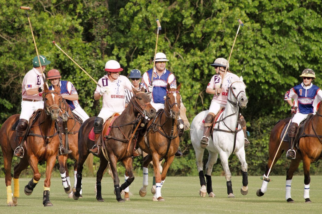 FALL POLO SCHOOL and 2 HR BEGINNER POLO CLINICS: SIGN UP NOW!!!