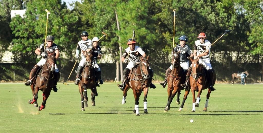Summer Polo Clinics and Fall Polo School