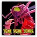 Yeah Yeah Yeahs - Mosquito