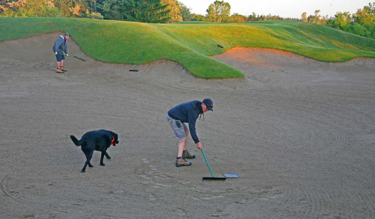 Pitching in on the greenside bunker