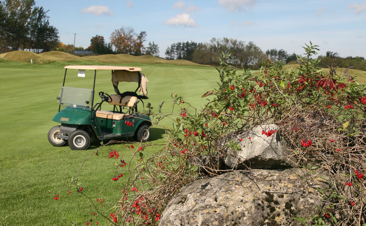 Kids Golf Free at Osprey Valley Golf