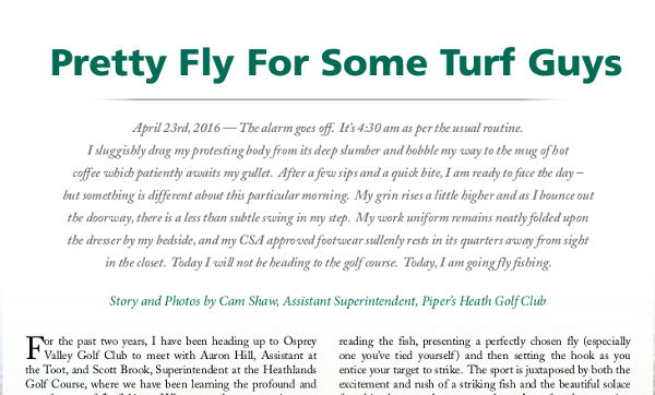 Pretty Fly for Some Turf Guys