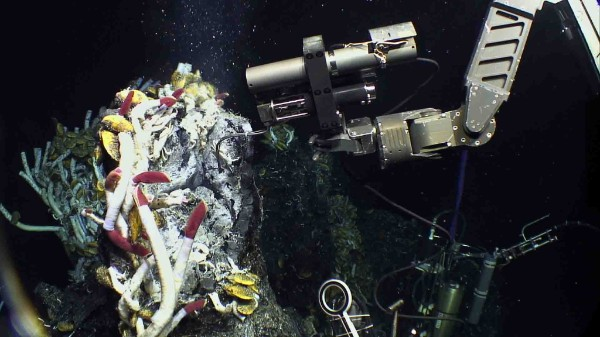Sampling hydrothermal vents on the East Pacific Rise