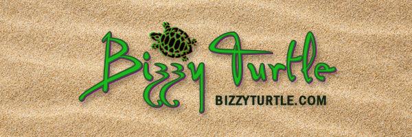 Bizz Z Turtle SEO & Graphic Design, Web & Mobile Social Media Marketing