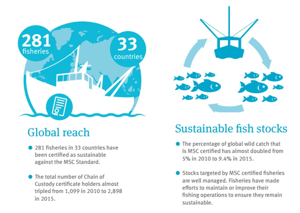 MSC Global Impacts Report 2016