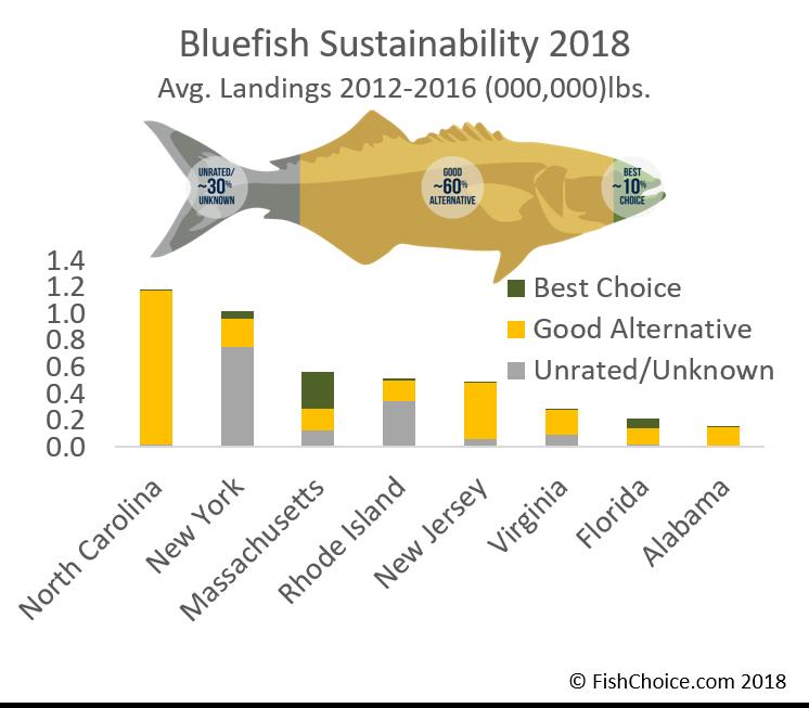 Seafood Spotlight: Bluefish