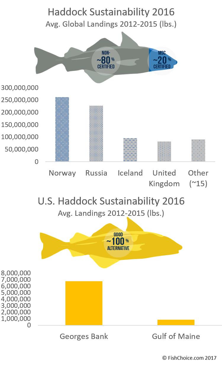 Seafood Spotlight: Haddock
