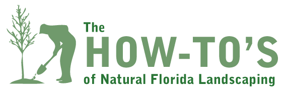 The How-tos of Natural Florida Landscaping