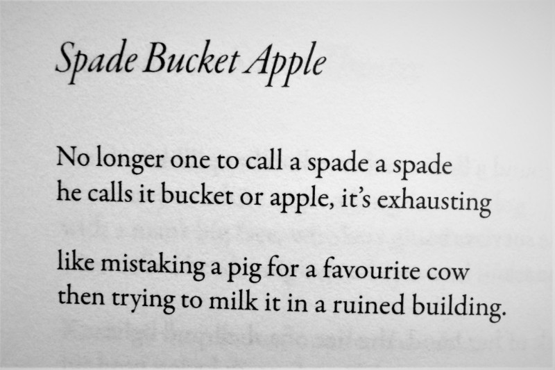 [Spade Bucket Apple by Cliff Yates]
