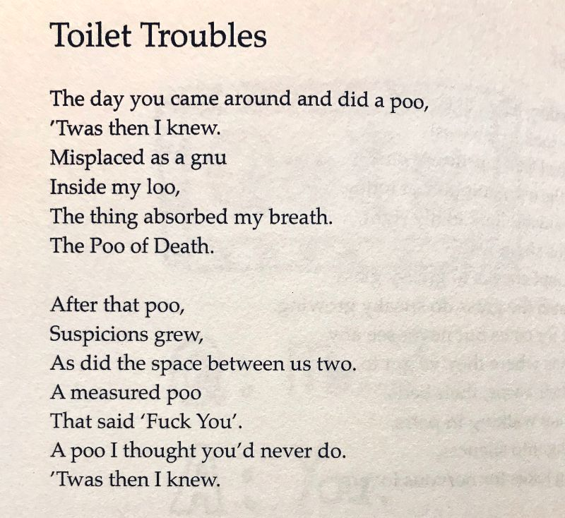 [Toilet Troubles by Amy McAllister]