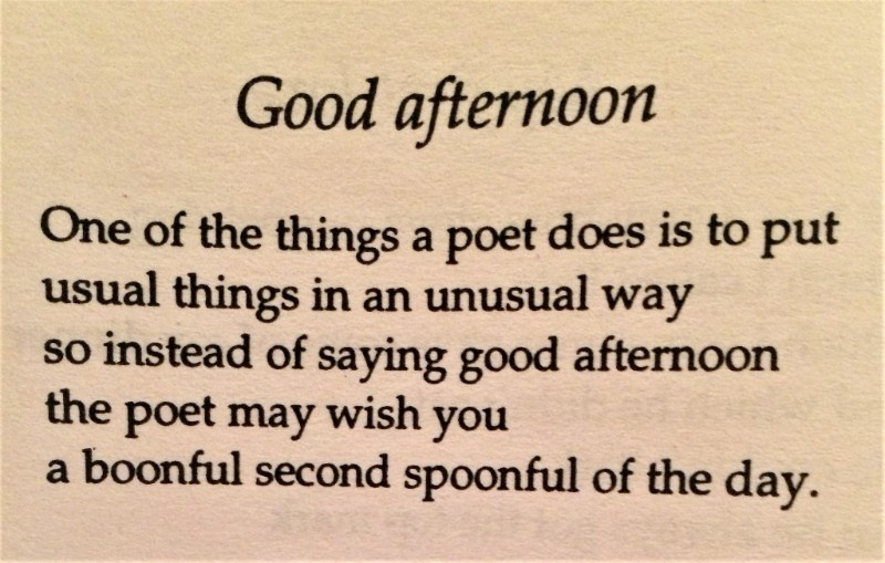 [Good Afternoon by John Hegley]