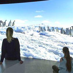 2 bezoekers aan de expo 'antarctica'