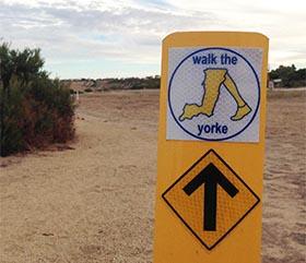 Walk the Yorke, 500km Trail, Project Update