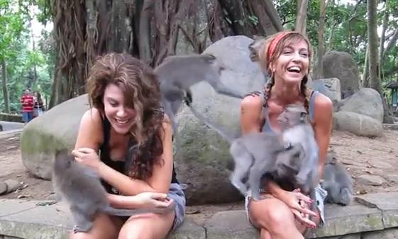 2 women 6 monkeys https://www.youtube.com/watch?v=oGclCgEamWE