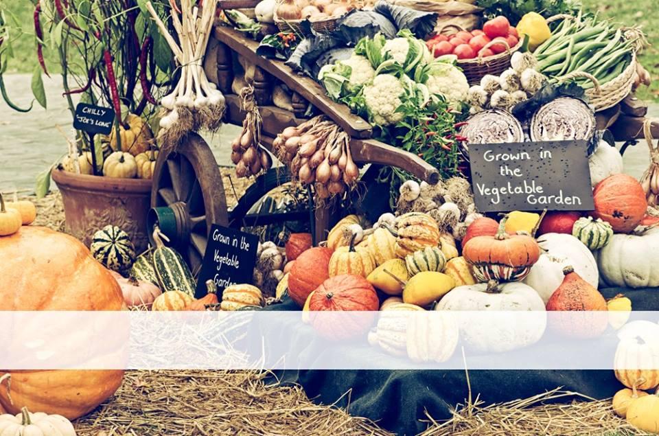 veggies fall