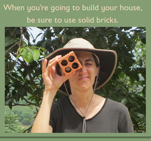 Image: When you're going to build your house, be sure to use solid bricks