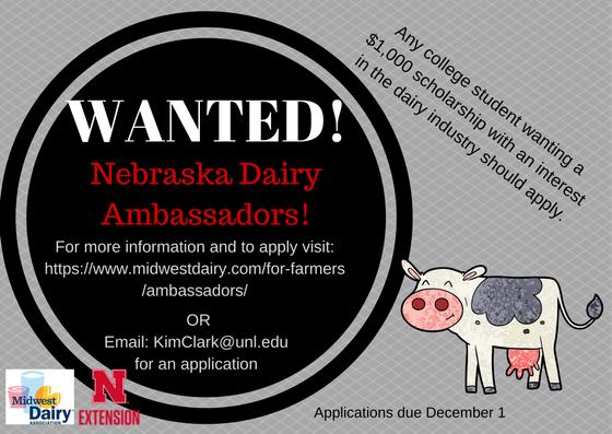 2018 Dairy Ambassador flyer