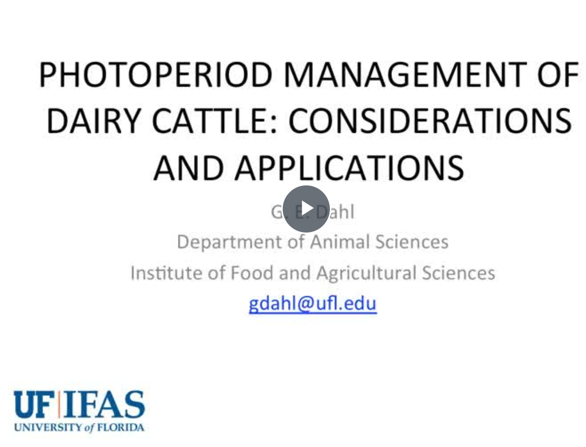 photoperiod for dairy cattle webinar cover