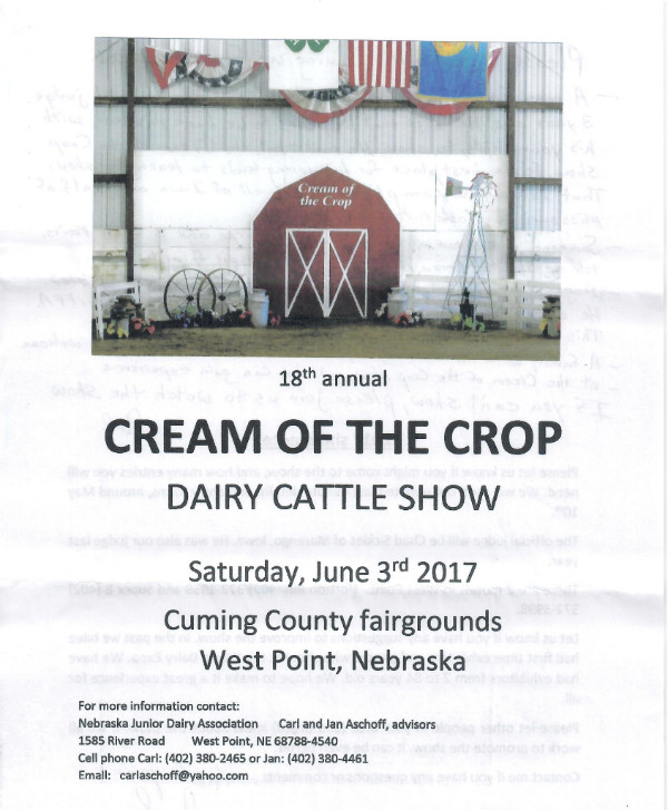 Cream of the crop dairy cattle show flyer