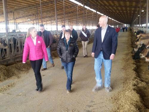 Govenor Ricketts visiting at Wakefield Dairy