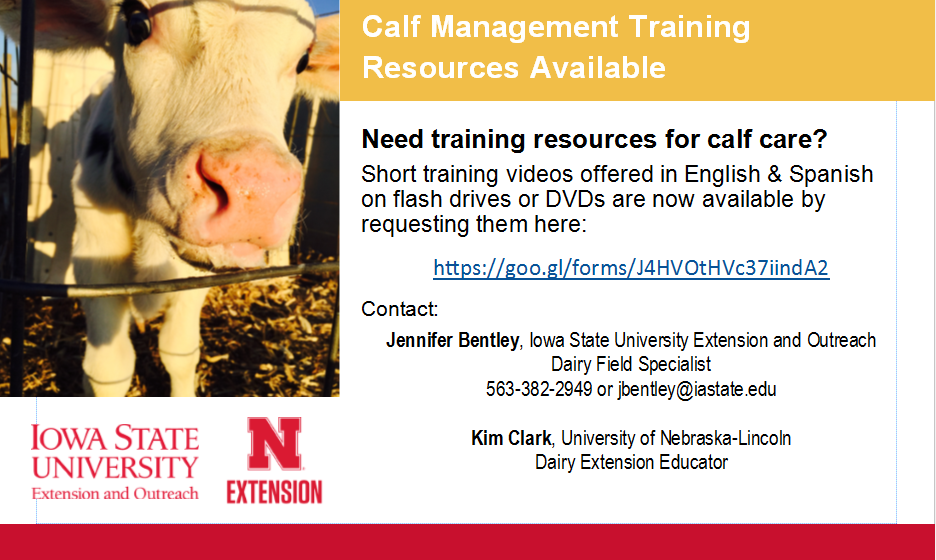 calf management training resources postcard