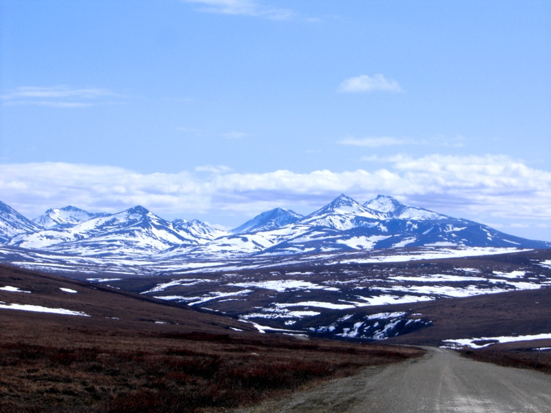 Teller Road, Nome