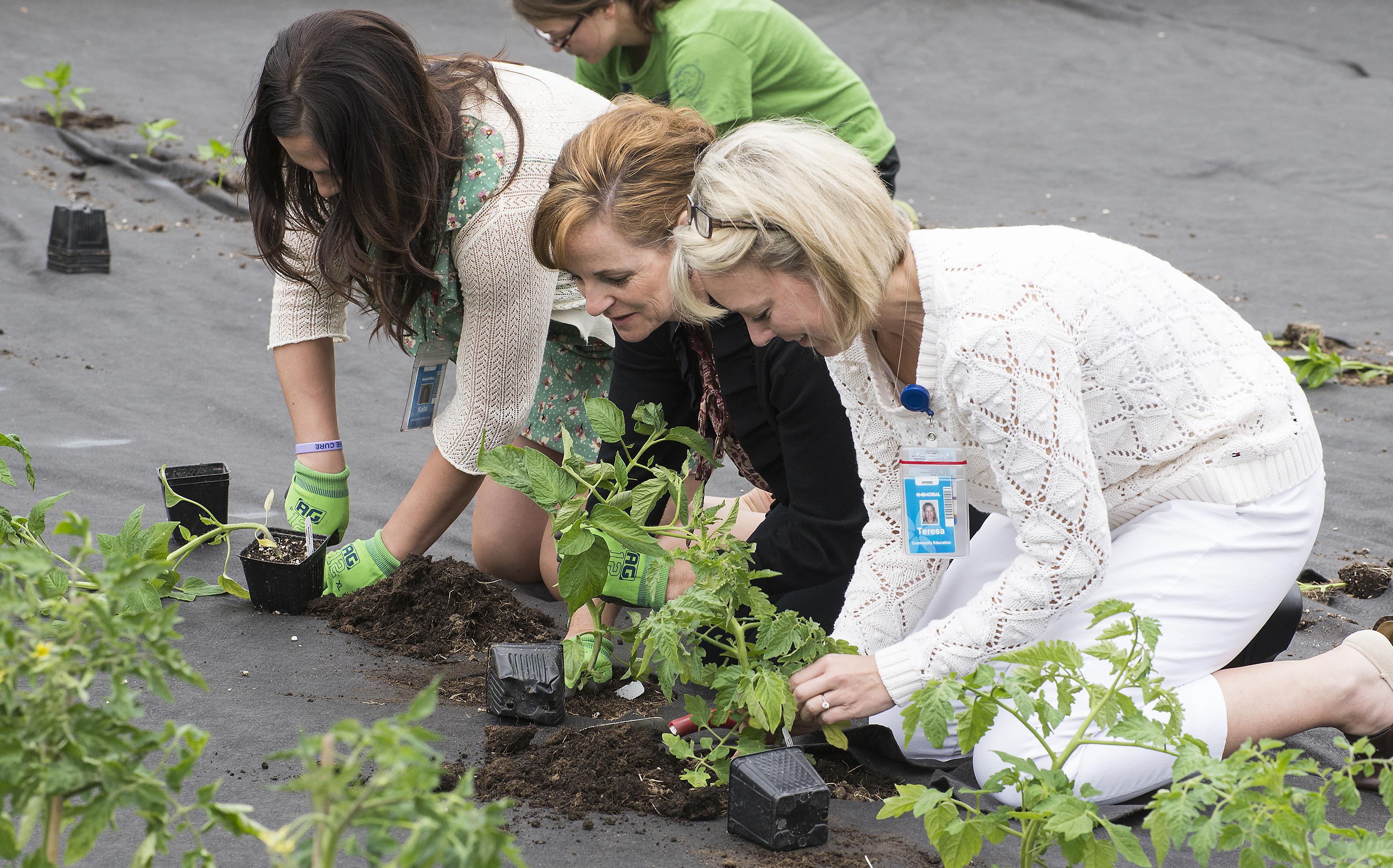 Volunteers plant the Yakima Valley Memorial Hospital Garden
