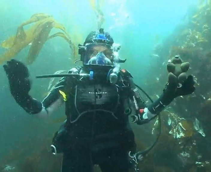 Dr. Sylvia Earle takes Buddy Bison on his first live dive.