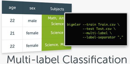 Multi-label Classifications